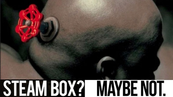 Steam Box? Maybe Not.