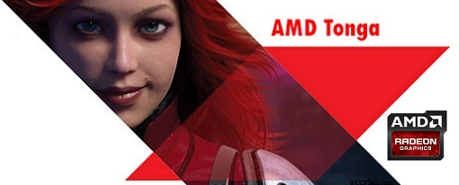 AMD trabaja en Tonga para competir con Maxwell